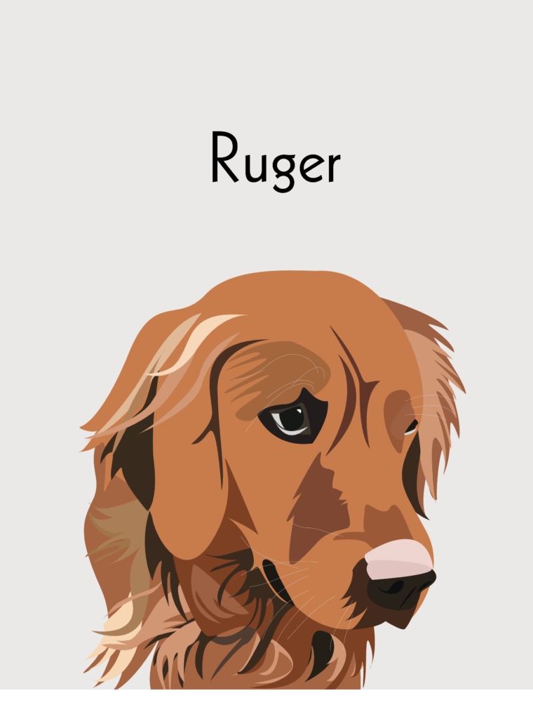 Ruger Dog Portrait