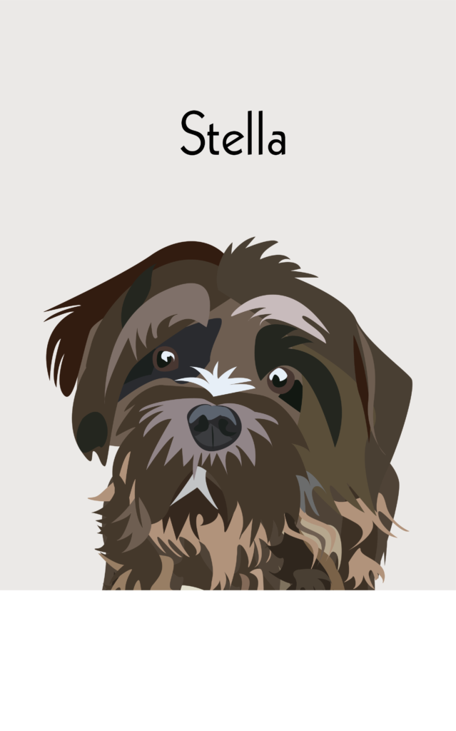 Stella Dog Portrait